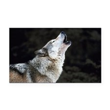 Howling timber wolf Rectangle Car Magnet