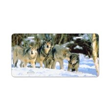 Pack of wolves in snow Aluminum License Plate