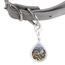 Overview of Mexico City, Me Small Teardrop Pet Tag