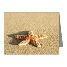 Starfish on Beach Note Cards (Pk of 20)