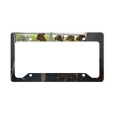 Boxer Gang Butts License Plate Holder