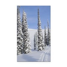 Backcountry Ski Track, Monash Rectangle Car Magnet