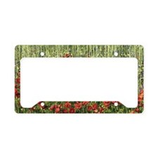 Flowers in Meadow, Umbria, It License Plate Holder