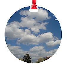Now Ornament