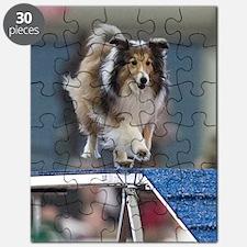 Fionas Show  Go Puzzle