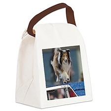 Fionas Show  Go Canvas Lunch Bag