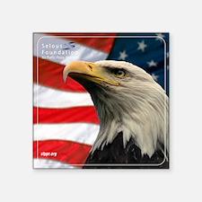 "Eagle Design Throw Pillow Square Sticker 3"" x 3"""
