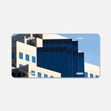 Optical Illusion/Downtown L Aluminum License Plate