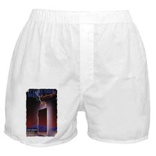 Midnight 23 x 35 Poster Boxer Shorts