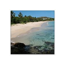 """coconut beach Square Sticker 3"""" x 3"""""""