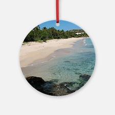 coconut beach Round Ornament