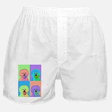 Op Art Bichon Boxer Shorts