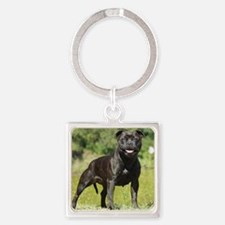 Staffordshire Bull Terrier 9R018D- Square Keychain