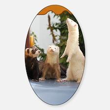 Adorable Trio Sticker (Oval)