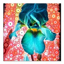 "Berry Iris Square Car Magnet 3"" x 3"""