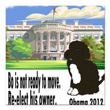 "Bo Is Not Ready To Move Square Car Magnet 3"" x 3"""