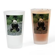 Cute Panda Drinking Glass