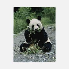 Cute Panda Twin Duvet