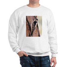 Downy Woodpecker Sweatshirt