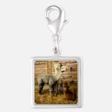 3 alpacka frame tile Silver Square Charm