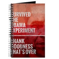 The Obama Experiment Journal