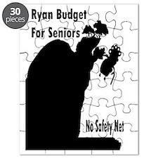 Ryan Budget for Seniors Puzzle
