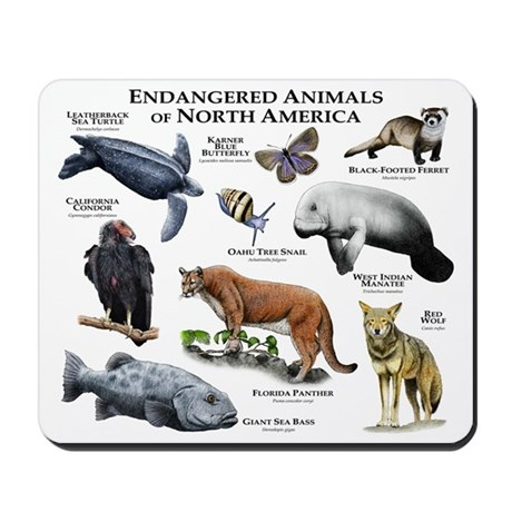 Endangered Animals of North America Mousepad by Admin ...