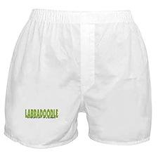 Labradoodle IT'S AN ADVENTURE Boxer Shorts
