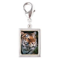 Tiger Silver Portrait Charm