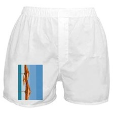iPad2 Cuba Beach Umbrella Case Boxer Shorts
