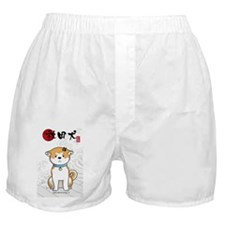 Journal_onde2 Boxer Shorts