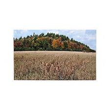 Adirondacks in Fall 3'x5' Area Rug