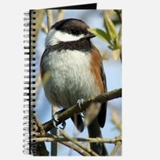 Black-Capped Chickadee Journal