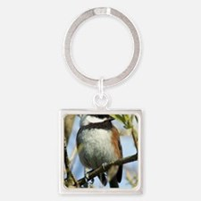 Black-Capped Chickadee Square Keychain