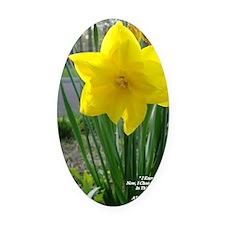 Lifes Garden/Flower photo Oval Car Magnet
