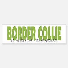 Border Collie ADVENTURE Bumper Bumper Bumper Sticker