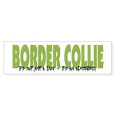 Border Collie ADVENTURE Bumper Car Sticker