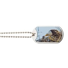 Bald Eagle  Dog Tags