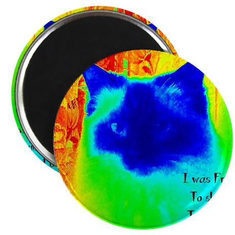 DollyCat Neon Verse - Ragdoll Cat - Magnet