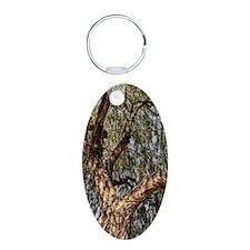 mesquite tree Keychains