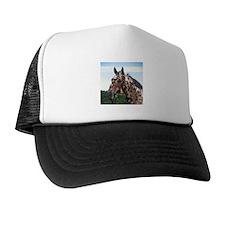 """""""Knabstrupper 3"""" Trucker Hat"""