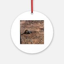 prairie dog Round Ornament