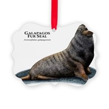 Galapagos Fur Seal Ornament