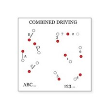 "Combined Driving for Kids Square Sticker 3"" x 3"""