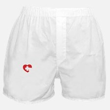 safeNurse1B Boxer Shorts
