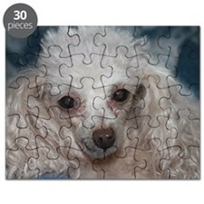 honey the tea cup poodle 2 Puzzle
