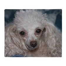 honey the tea cup poodle 2 Throw Blanket