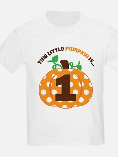 Pumpkin 1st Birthday T-Shirt