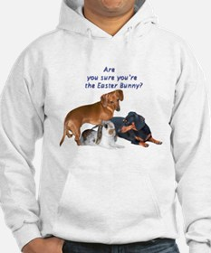 Are you the Easter Bunny Dogs Jumper Hoody