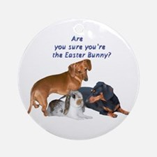 Are you the Easter Bunny Dogs Ornament (Round)